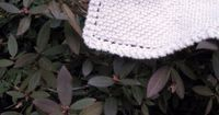 Suzies Stuff: Another Grandmother's Favorite Dishcloth