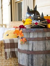 The Halloween craft experts at HGTV.com share step-by-step instructions for making carve-free pumpkins that resemble Halloween black cats.
