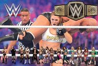 "WWE '�'�"" World Wrestling Entertainment: The Perfect Entertainer"
