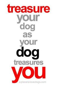 treasure your dog �€� from APlaceToLoveDogs.com �€� dog dogs puppy puppies cute doggy doggies adorable funny fun silly photography typography quotes