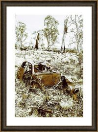 Just Hold'en Together Framed Art | Vintage country scene on a abandoned car wreckage in rustic rural decay. West Coast Tasmania, Australia | #countryhomedecor #farmhousestyle #outbackaustralia #australiadecor #aussiewallart #holden #dilapidated #fra...