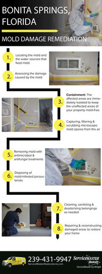 Contact us today to discuss your concerns and to schedule a consultation for mold remediation in Bonita Springs, FL. Don't wait; your family's health is counting on quick mitigation if you do have mold. Contact us now at 239-431-9947!