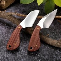 Mini Hunting Knife Fixed Blade Stainless Steel Outdoor Camping Home Tools Gifts $23.10