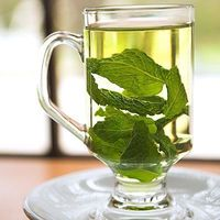 Four natural remedies using mint.