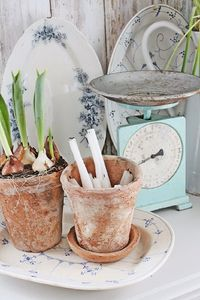 Old terracotta pots and blue-white serving platters