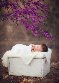 Emilynn {a newborn session} from LJHolloway Photography