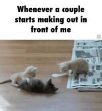 Whenever a couple starts making out in front of me humor #gif #funnygif #humor #funny #PMSLweb