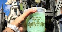 Planning to visit the Wizarding World of Harry Potter parks at Universal Orlando? Here are 10 things you have to do in Diagon Alley and Hogsmeade.