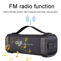 CIGII F62D 10W Portable bluetooth Speaker Noise Reduction Outdoor Headset Support FM Radio USB AUX With Strap A2DP Wireless
