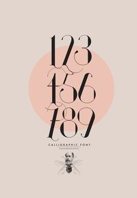ISADORA Calligraphic Font by Daniel Barba, via Behance