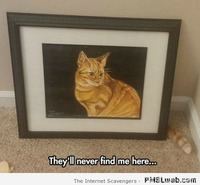 They won't find me here cat meme