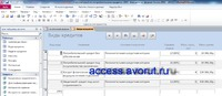 Ready access database. Accounting for payments on consumer loans. Form �€œTypes of loans�€