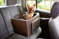 Planning a summer road trip? Travel safely with the Martha Stewart Pets Booster Seat for dogs #marthastewartpets #petsmart