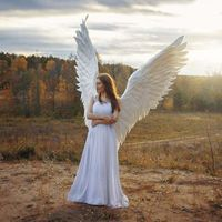 Halloween 3D Angel Big Wings $41.99