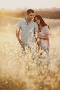 I like the field, wheat, sun and rustic feel of this photo.
