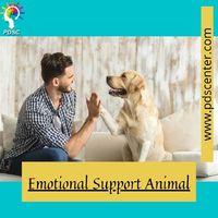 Emotional Support Animal.jpg