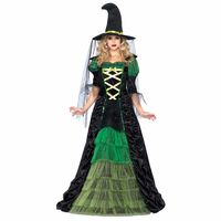 Storybook Witch Adult Costume Small-Medium https://costumecauldron.com