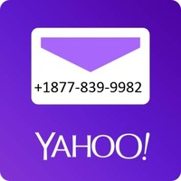 71-YTbQdjfL. SY355 .png
