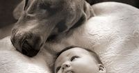 25 Photos Of Babies With Puppies, Guaranteed To Melt Your Heart