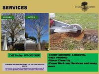 T Crane Work and Services by Guardian Tree Experts. We're ready to assist you with any project, large or small, and we pledge to exceed your expectations in every aspect of safety, service and performance. For more details click on link: https://...
